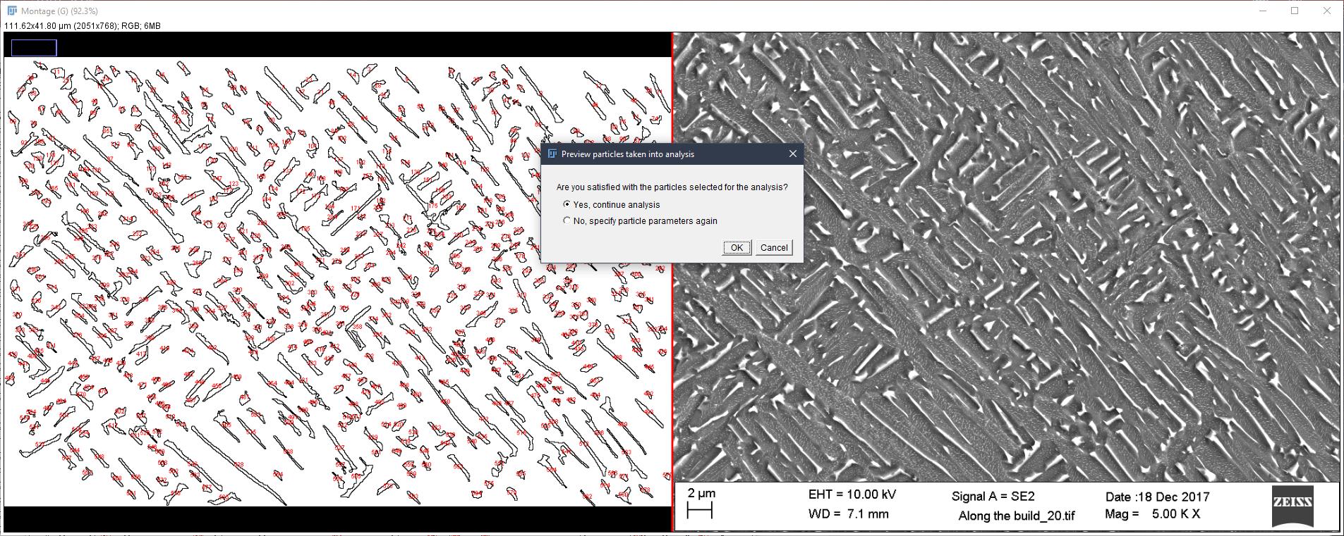 Particle verification